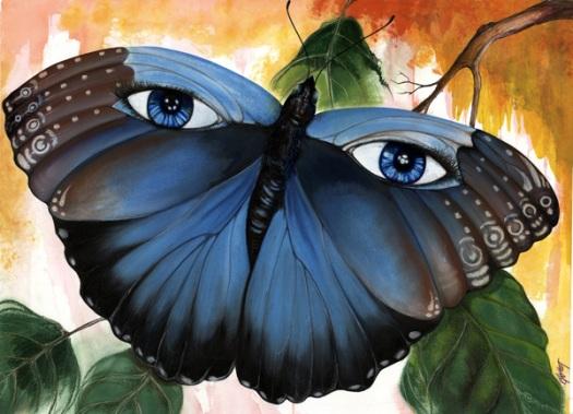 butterfly-eyes-blue