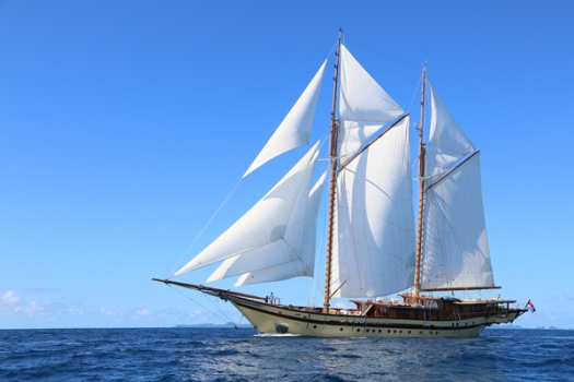 lamima under sail